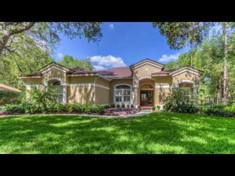 Fish Hawk Trails - Homes For Sale
