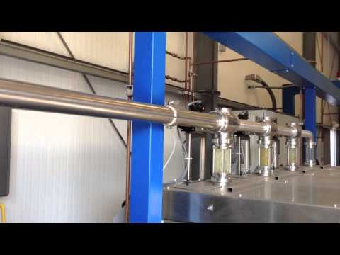 Sciabica's Olive Oil Production - How is Olive Oil Made?