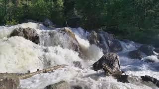Расслабляющий Шум Горной Реки 10 часов глубокой Релаксации