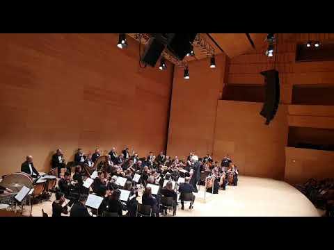 Потрясающая акустика Auditori De Girona!