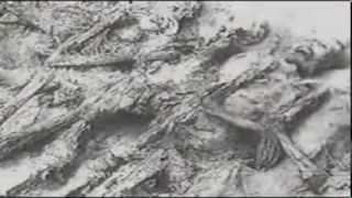 Видео про ужасы войны! (Клип)
