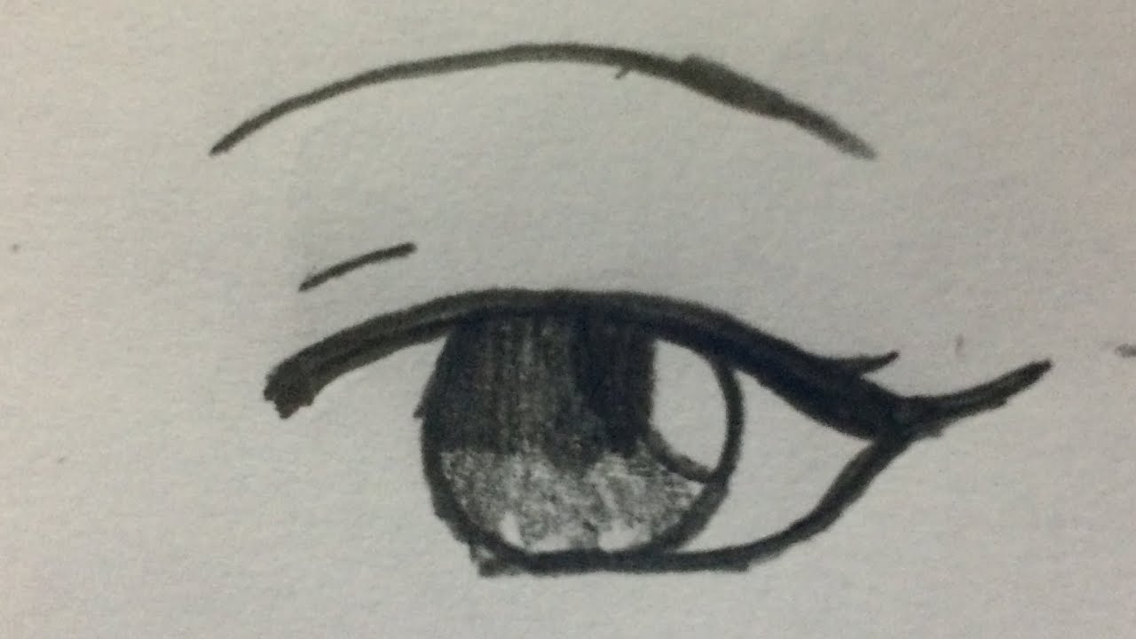สอนวาดตาผู้หญิง ฉบับง่าย
