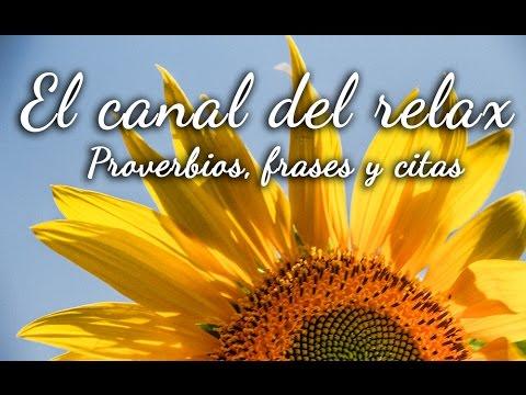 Musica Relajante Con Proverbios Citas Frases De Amor Esperanza