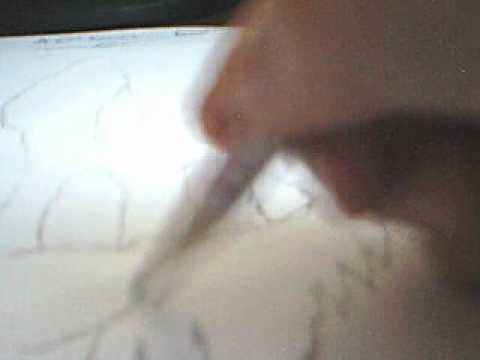 how to draw gangsta bugs bunny quick sketch - youtube
