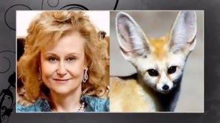 Изумительное сходство с животными