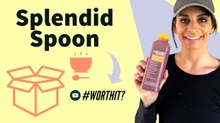 Splendid Spoon Review [2021]  My take on their meals and smoothies