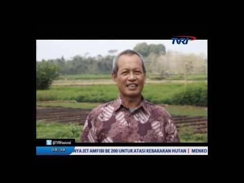 Salam dari desa, episode Kec Kemiri Kab Purworejo (TVRI)
