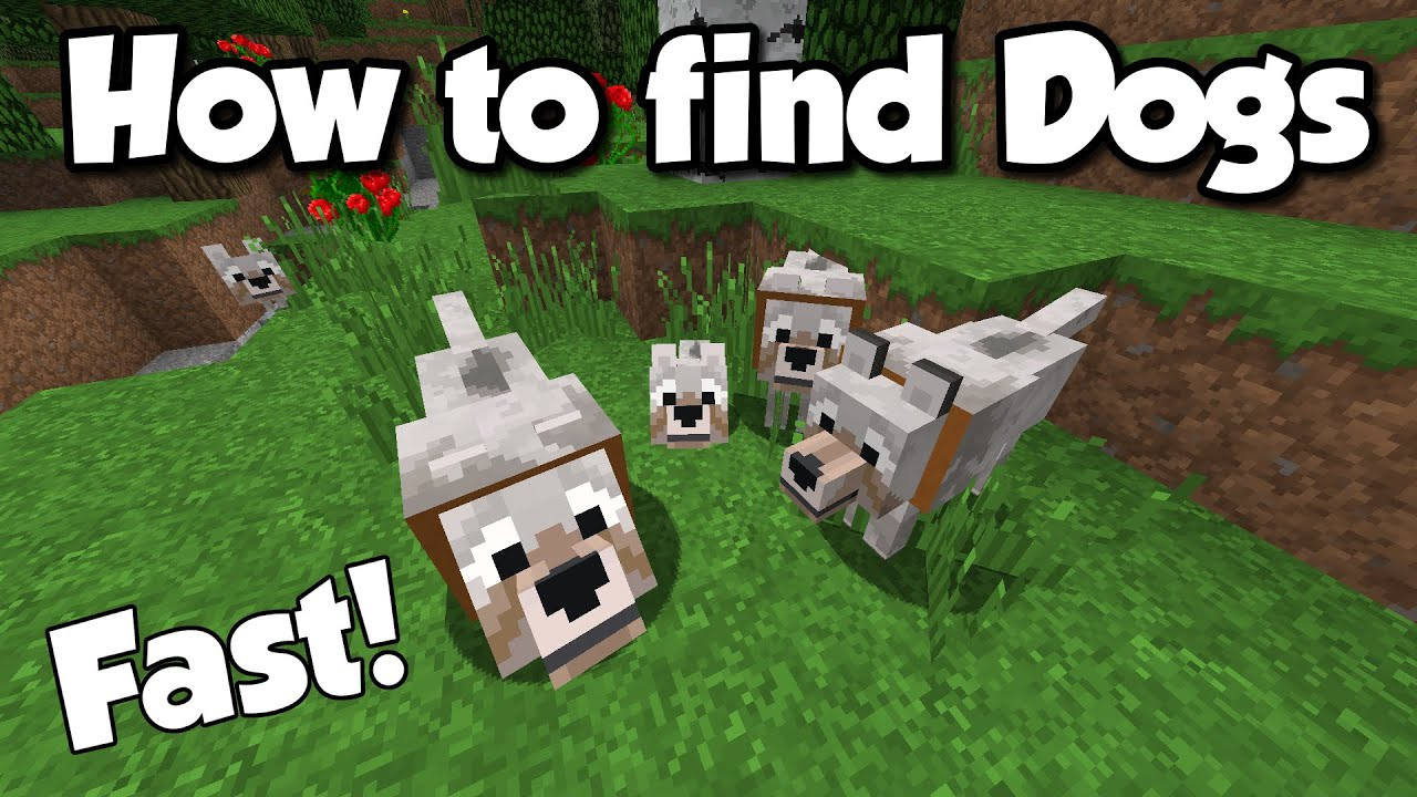Where Can I Find Dogs In Minecraft