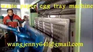 4000 pieces waste paper egg tray making machinery-0086-15153504975