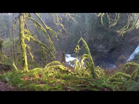Lower Falls at Butte Creek Falls, 4k