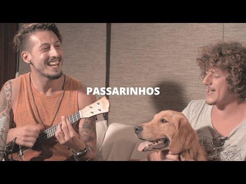 Passarinhos - Emicida e Vanessa da Mata (Pedro Schin & Leash cover acústico) Nossa Toca
