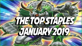 Yu-Gi-Oh! The Top Staples For January 2019