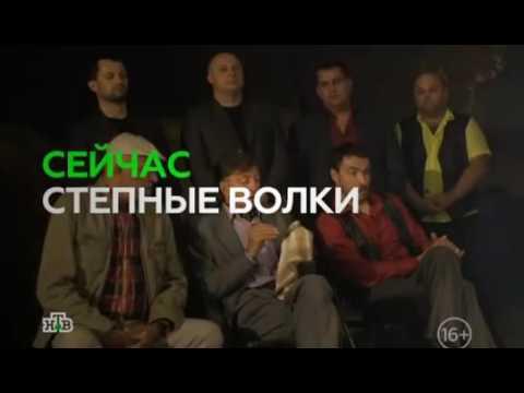 Сериал Степные волки (2014-2015) - актеры и роли