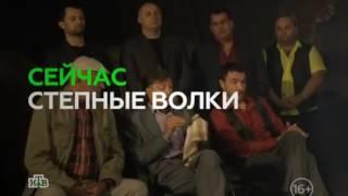 {new} Степные волки 23 серия из 24 драма криминальный сериал 2016