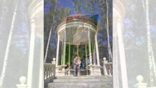 Свадьба Сергей и Анна