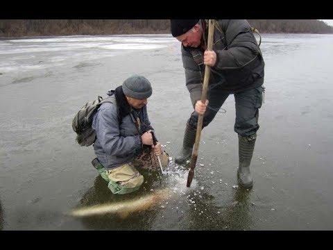 Как Ловить Щуку на Жерлицы Зимой. Поиск Рыбы и Способы Ловли на Живца