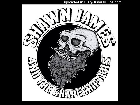 Shawn James & The Shapeshifters - American Hearts