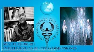 INTELIGENCIAS DE OTRAS DIMENSIONES  por Miguel Pedrero