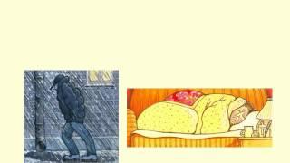 Царство Прокариоты. Подцарство Бактерии.AVI