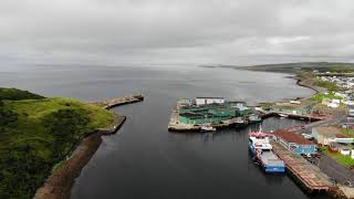 Scenes of the Burin Peninsula, Newfoundland by Air