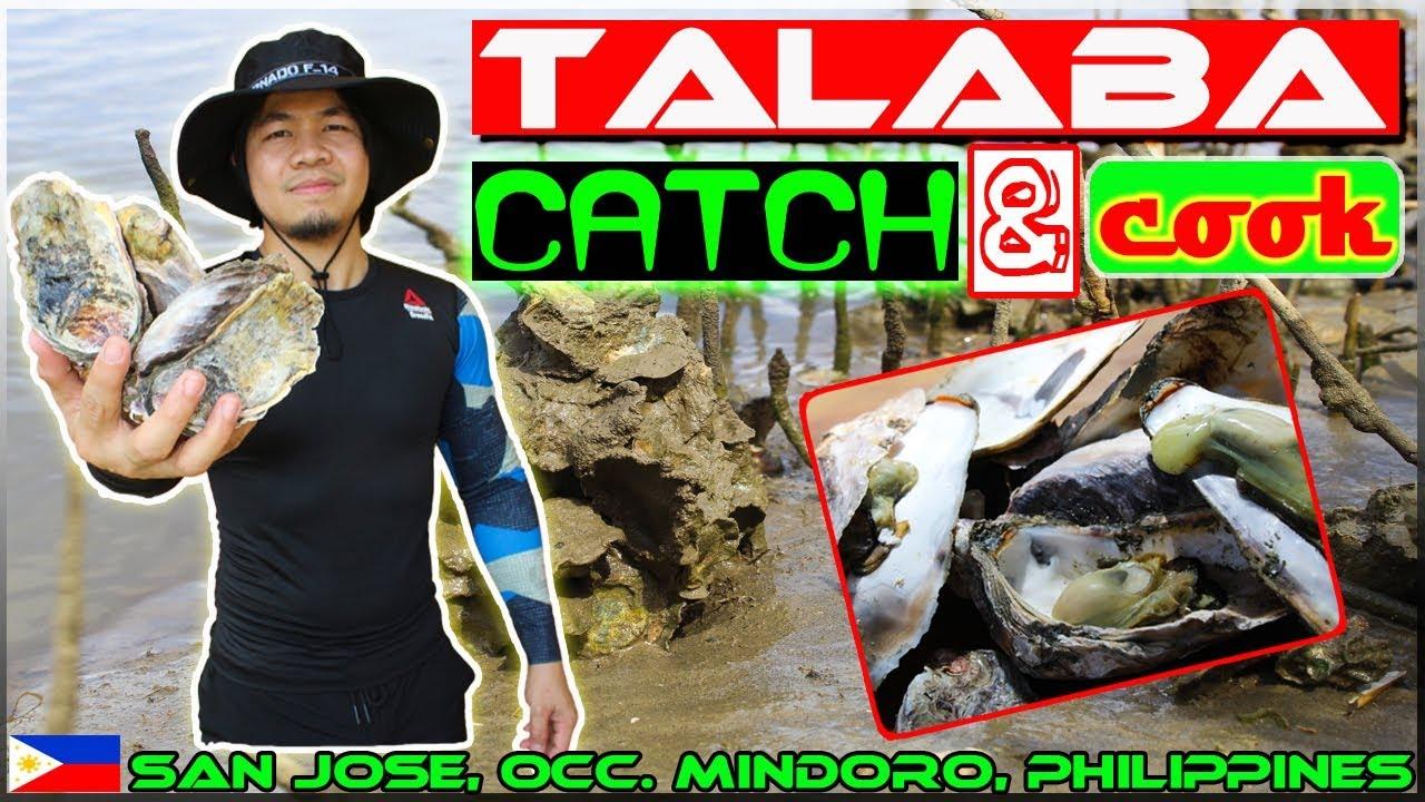 Harabas EP2 - Oyster (talaba) Catch and Cook {Inihaw na Talaba}