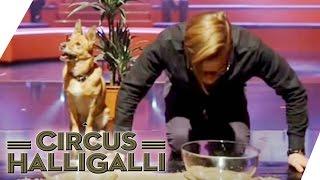 Circus Halligalli Aushalten: 'Wetten, dass..?' - Teil 2 | ProSieben thumbnail