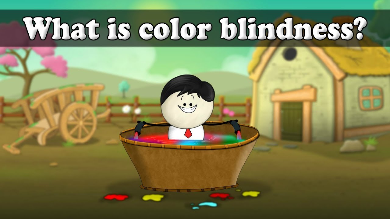 What is color blindness? | It\'s AumSum Time - YouTube