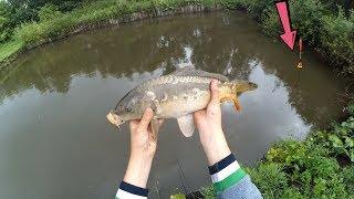 Рыбалка в СОБСТВЕННОМ ПРУДУ !!!! СРАЗУ 2 КАРПА ????  ПОПЛАВОЧНАЯ ЛОВЛЯ !!!
