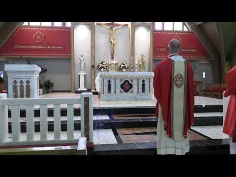 Daily Mass 11/23/20