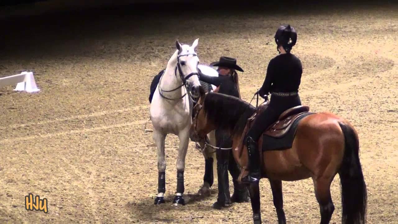 HorseJunkiesUnited.com