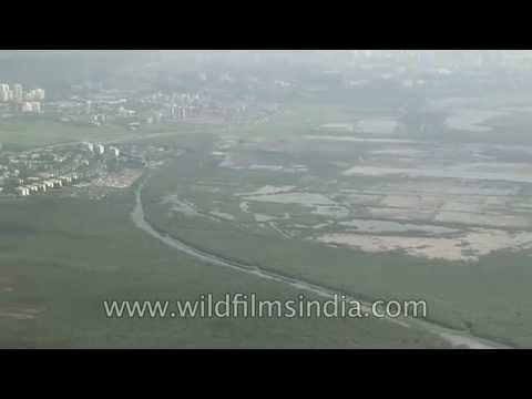 Mumbai aerials: creeks, mangroves and swamps
