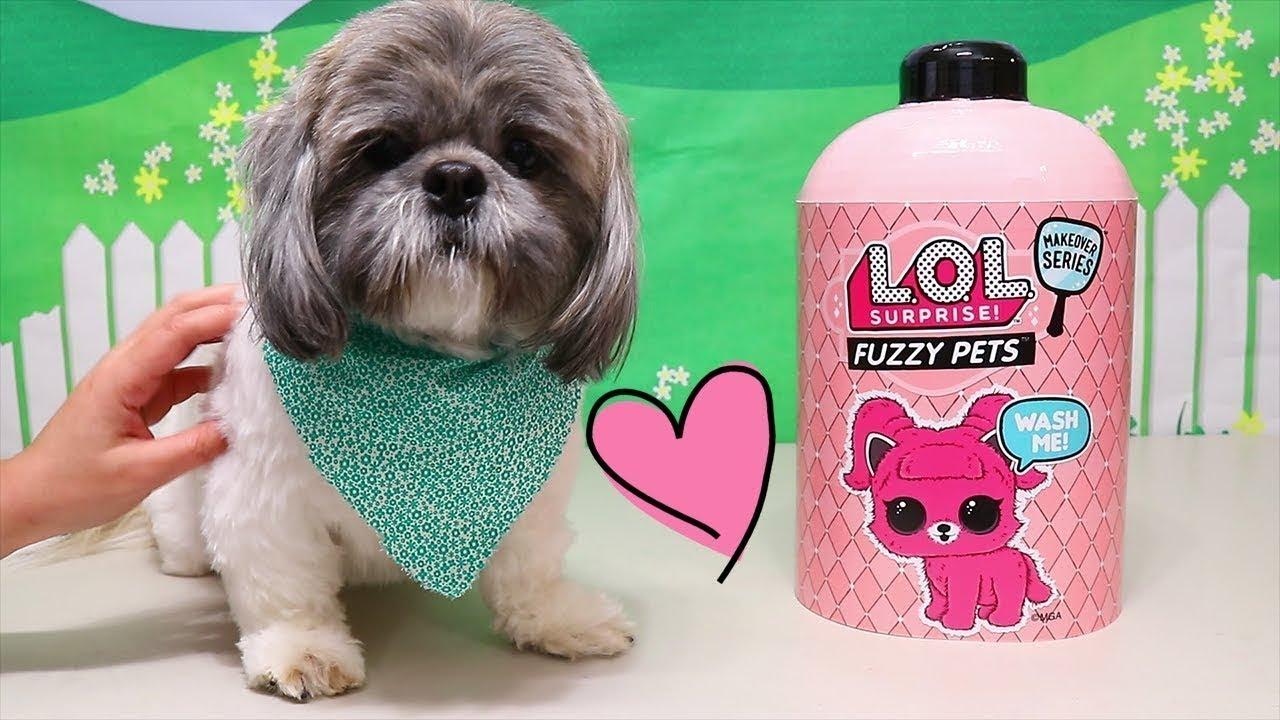 Bonecas LOL Surpresa Abrindo Fuzzy Pets com o Sr Hamilton -Brinquedonovelinhas