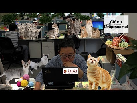 The People's Daily is Run By Cats | China Uncensored