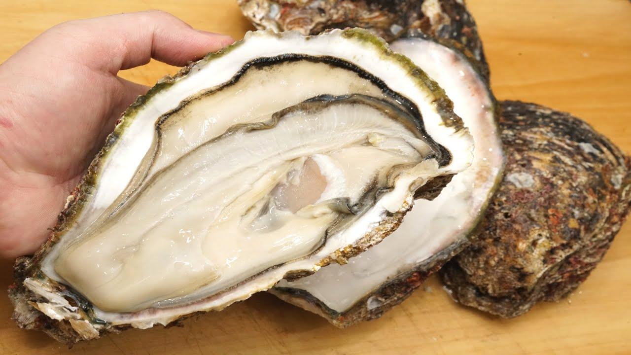 岩牡蠣(イワガキ)の剥き方とノロウィルスによる食中毒を防止する下処理方法