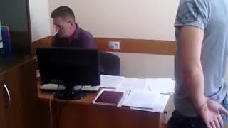 Жалоба в администрацию о нападении собак в городе Пугачев