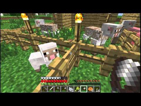 Minecraft Mee 22: Wol, Wol, Wol