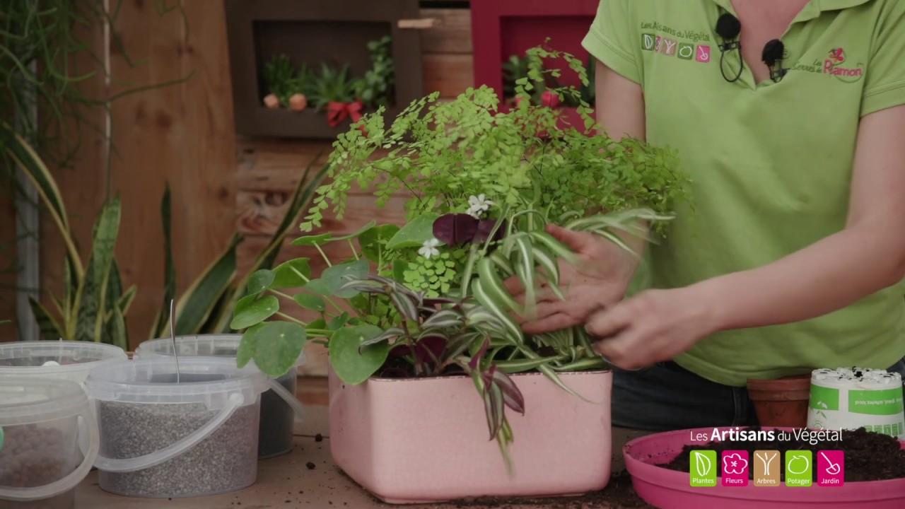 Plante Pour Salle De Bain Sombre quelles plantes vertes mettre dans une salle de bain ? quelles plantes  mettre dans une pièce sombre?