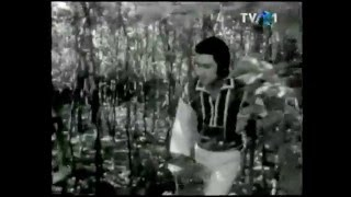 Ion Dolanescu ---- In padure la Daimac(Codin)