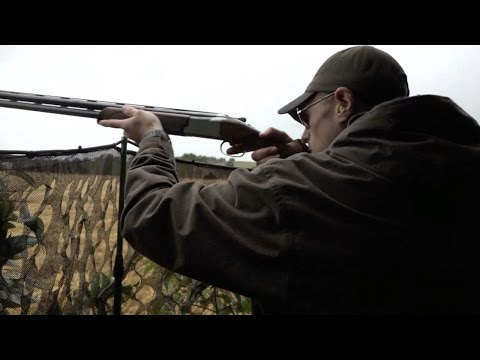 The Shooting Show - rainy Irish pigeon and crow control