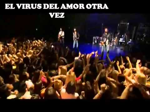 Love Bug - Jonas Brothers ( Traducida )