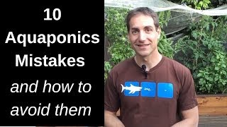 10 Aquaponics Mistakes and how to avoid them