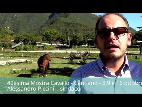 40esima Mostra Cavallo - Cantiano 8-9 e 16 settembre 2016