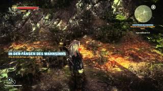 Lets Play The Witcher 2 German - Part 37 - IN DEN FÄNGEN DES WAHNSINNS (Quest abgeschlossen)