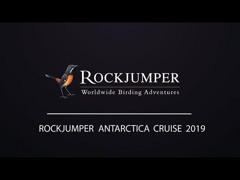 Exclusive Rockjumper Antarctica Charter 2019