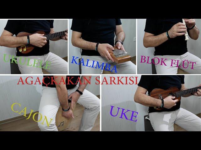 BLOK FLÜT DERSİ 3 Ağaçkakan Şarkısı Kalimba, Ukulele, Cajon, (Fa, Sol, La notaları)