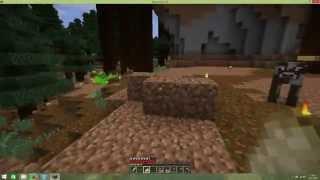 Minecraft chyba grafiky + řešení (fix minecraft flickering textures)