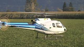 Fusoliera Eurocopter AS 350 Ecureuil - T-REX 600