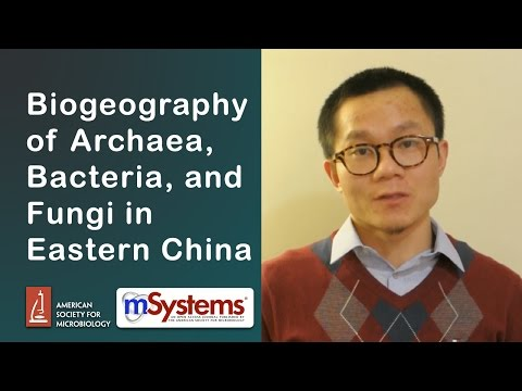 Biogeography of Archaea, Bacteria, and Fungi in Eastern China - mSystems®