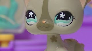 ★ LPS Double Trouble - Episode 8 (The Truth) ★