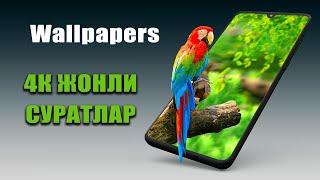 4K Жонли суратлар & Live Wallpapers